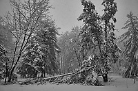 Late Winter Nor'easter. Image taken with a Leica CL camera and 18 mm f/2.8 lens (ISO 100, 18 mm, f/2.8 1/160 sec).