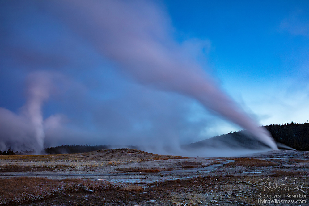 A long exposure captures plumes rising from eruptions of both Old Faithful (right) and Grand Geyser (left) at dawn in the Upper Geyser Basin of Yellowstone National Park, Wyoming. Yellowstone is home to the world's largest concentration of active geysers, with more than 400 geysers in its Upper Geyser Basin alone.