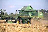 Combine harvester harvesting barleyy