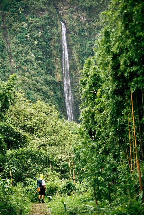 Waimoku Falls at Kipahulu, Haleakala National Park, Maui, Hawaii. USA.