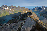 Female hiker descending rocky narrow ridge from Helvetestind mountain peak, Lofotodden national park, Moskenesøy, Lofoten Islands, Norway