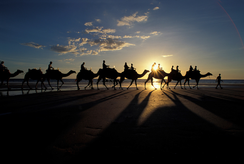 Australia, Western Australia, Broome, Tourists ride camels along Cable Beach at sunset along the Indian Ocean