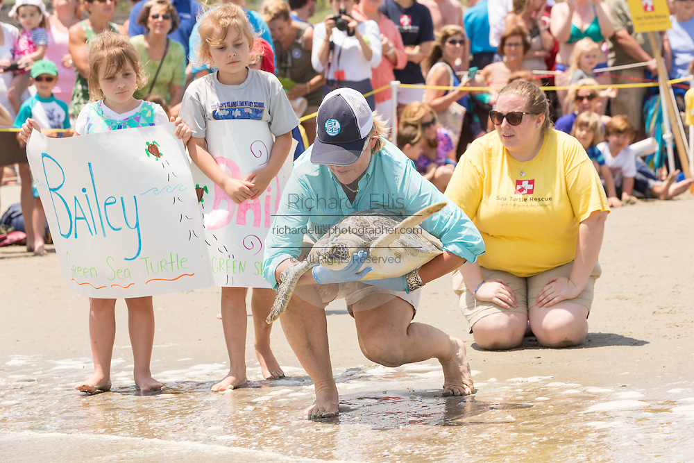 A volunteer and children prepare to return a rehabilitated Green sea turtles back into the Atlantic ocean during the release of rescued sea turtles May 14, 2015 in Isle of Palms, South Carolina. The turtles were rescued along the coast and rehabilitated by the sea turtle hospital at the South Carolina Aquarium in Charleston.