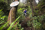 Liana Welty rappels down a steep, impassable headland on a traverse of the North Coast, Olympic National Park, Washington.
