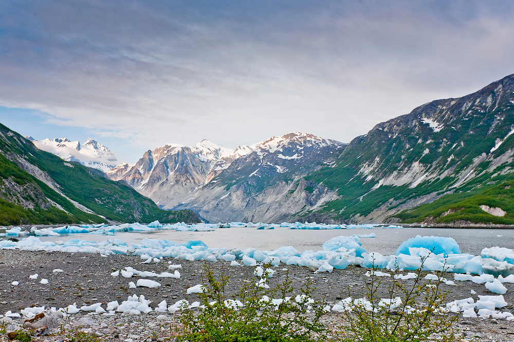 Blue ice bergs rest on the beach in McBride Inlet with tall mountains in the background.