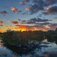 South Florida landscape photography from nature photographer Juergen Roth showing the waterscape of Wakodahatchee Wetlands in magical sunrise light. Wako is an amazing nature area for viewing and photographing birds and other wildlife in Florida. <br /> <br /> Florida nature photography images are available as museum quality photo prints, canvas prints, wood prints, acrylic prints or metal prints. Fine art prints may be framed and matted to the individual liking and interior design room project needs:<br /> <br /> https://juergen-roth.pixels.com/featured/wakodahatchee-wetlands-birds-and-sunrise-juergen-roth.html<br /> <br /> All Florida nature photography images are available for photography image licensing at www.RothGalleries.com. Please contact me direct with any questions or request.<br /> <br /> Good light and happy photo making!<br /> <br /> My best,<br /> <br /> Juergen<br /> Prints: http://www.rothgalleries.com<br /> Photo Blog: http://whereintheworldisjuergen.blogspot.com<br /> Instagram: https://www.instagram.com/rothgalleries<br /> Twitter: https://twitter.com/naturefineart<br /> Facebook: https://www.facebook.com/naturefineart