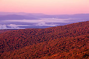 Image of the Berkshire Hills in fall from Mount Greylock, Massachusetts, New England by Randy Wells