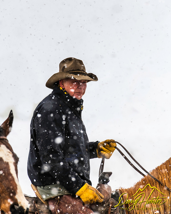 Cowboy Bob Ellis braving the storm.  Bob's working as a pickup man at the cutter races in Afton Wyoming,