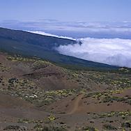 Orotava Valley, Tenerife, Canary Islands
