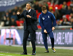 Brighton & Hove Albion manager Chris Hughton gestures from the touchline during the Premier League match at Wembley Stadium, London.