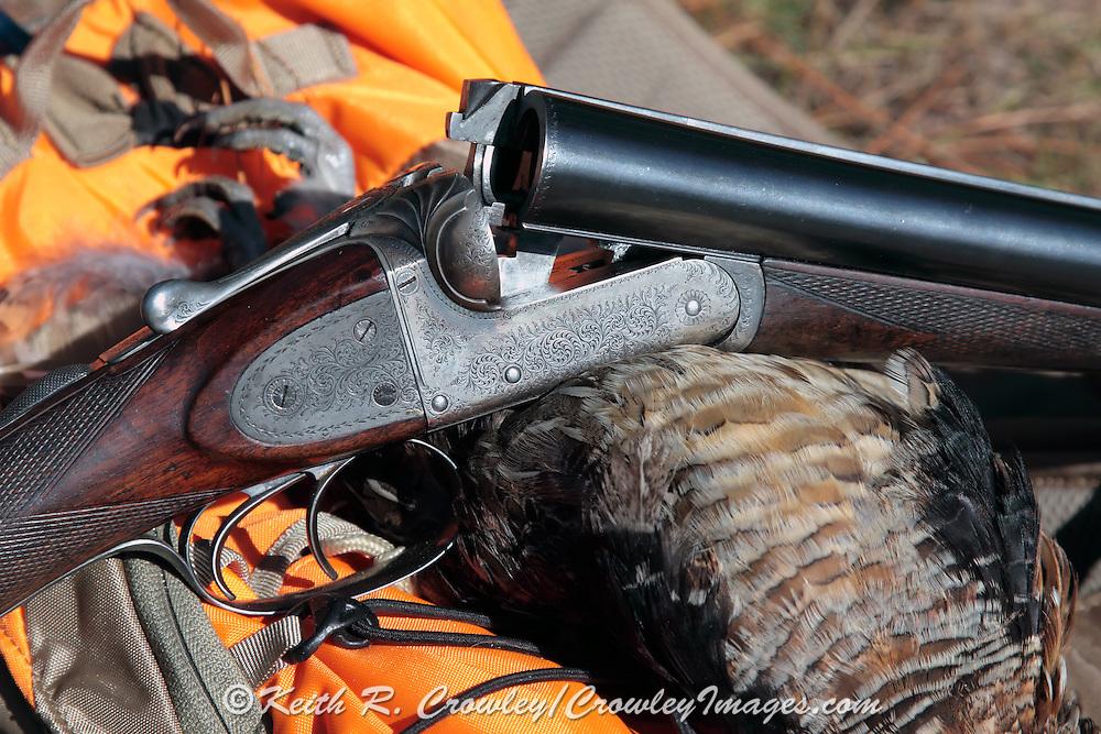 "Webley ""screw grip"" 12 bore double barreled shotgun and ruffed grouse."