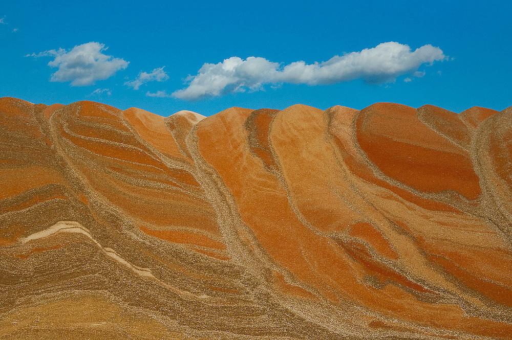Hills of grain near Coolidge, Kansas