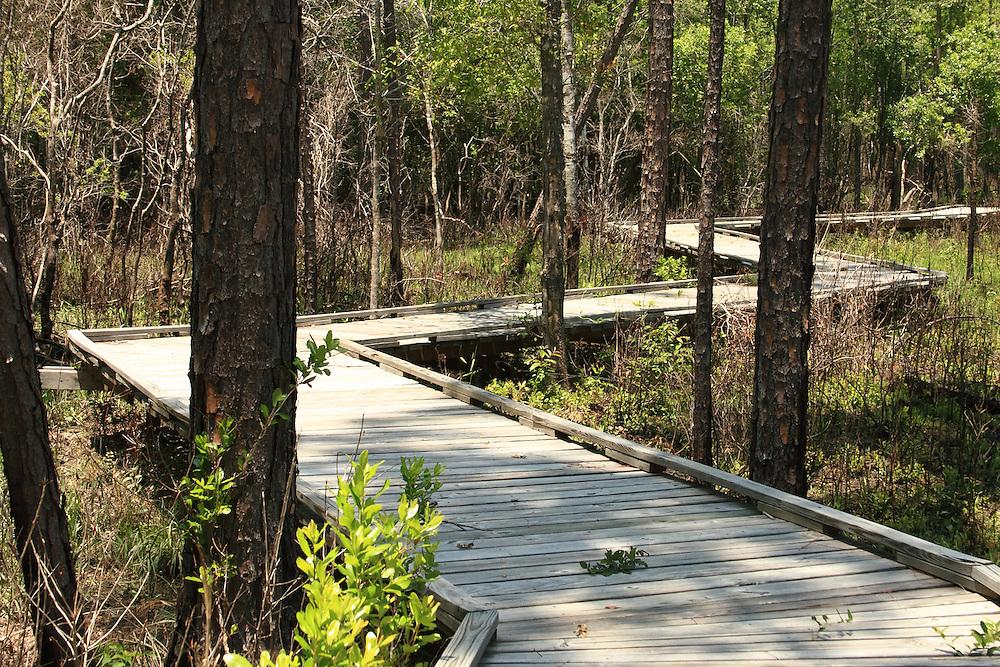 Abita Creek Preserve