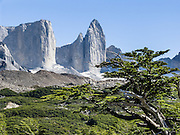 The granite rock tower of Cerro Catedral rises in the French Valley (Valle Frances) in Torres del Paine National Park, Chile. The foot of South America is known as Patagonia, a name derived from coastal giants, Patagão or Patagoni, who were reported by Magellan's 1520s voyage circumnavigating the world and were actually Tehuelche native people who averaged 25 cm (or 10 inches) taller than the Spaniards.
