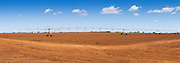 Mobile lateral move irrigation boom system on red soil near bundaberg, Queensland, Australia <br /> <br /> Editions:- Open Edition Print / Stock Image