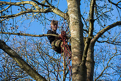 Harefield, UK. 18 January, 2020. An activist gives a tree climbing lesson to fellow activists from Extinction Rebellion, Stop HS2 and Save the Colne Valley who had reoccupied the Colne Valley wildlife protection camp on the second day of a three-day 'Stand for the Trees' protest in the Colne Valley timed to coincide with tree felling work by HS2. Bailiffs acting for HS2 had evicted all but two activists from the camp the previous week. 108 ancient woodlands are set to be destroyed by the high-speed rail link.