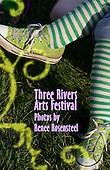 Three Rivers Arts Festival 2011