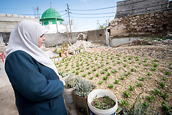 16 February 2020, Irbid, Jordan: Fatima Al-Omari looks out over  her garden in Al-Mazar. She is one of many beneficiaries to recently have received support from the LWF in setting up home-based farming in the area of Al-Mazar. By providing tools and seeds, the project has helped 150 families grow food for themselves and, in some cases, also earn an income from selling their surplus at local markets.