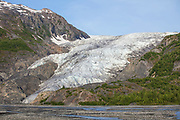 Southcentral Alaska, Kenai Peninsula.  The toe of Exit Glacier as it meets the valley floor.