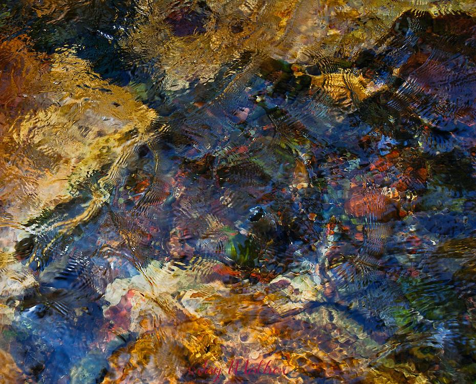 Submerged rocks in the Metolius River