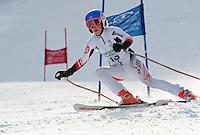 Tecnica Cup alpine giant slalom at Gunstock  January 28, 2012.