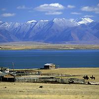 MONGOLIA, Darhad Valley. Riders and corrals at Tsaagan Nuur, beside Duud Nuur.  Horidol Saridog Mts. bkg.