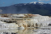 Mammoth Hot Springs Terraces in Yellowstone National Park, Wyoming, USA