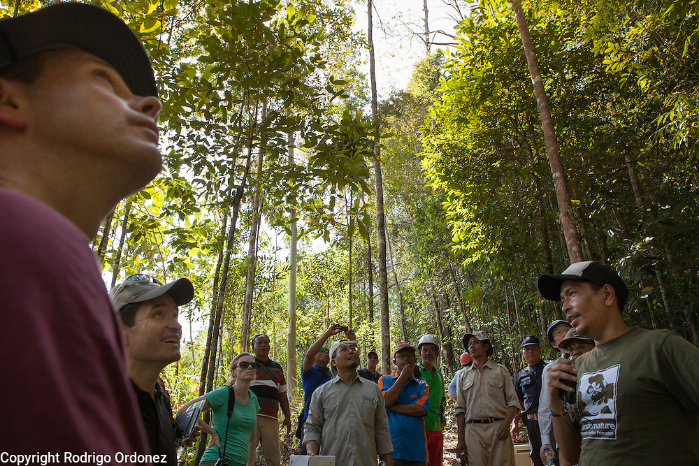 Ishak Yassir (right), Forestry Manager and Co-Founder of Samboja Lestari, briefs visitors at the Arsari Lestari conservation forest in Penajam Paser Utara district, East Kalimantan, Indonesia, on March 12, 2016. The plan for the Arsari Lestari conservation area is to preserve the virgin rainforest while creating value for ICTI and local people in a production-protection system that reduces emissions. <br /> (Photo: Rodrigo Ordonez)