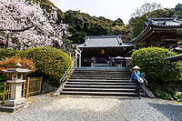 """Hantaji -Temple of Great Wealth is located on a hill with a view of Matsuyama Castle and the Seto Inland Sea in the distance. It is known as the """"temple of the universal"""" and contains a statue of Nagara the medicinal priest.  Hantaji also has a protective diety which is said to help with examinations, as well as marital harmony and warding off misfortune.   Hanta-ji is temple number 50 of the Shikoku 88 Pilgrimage Trail which is traditionally completed on foot taking up some 40 days to complete as the full course is approximately 1200 km."""