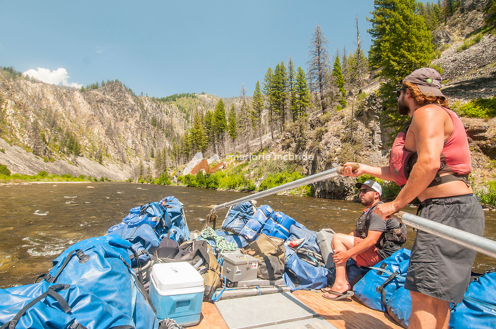 Driving the sweep on the Middle Fork of the Salmon River, Idaho.