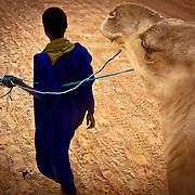 Tuareg with camel near Timbuktu, Mali .