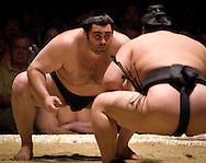 Kokkai (center) faces off with Hokutoriki in the second round of Day 1 of Grand Sumo Tournament Los Angeles 2008, Los Angeles Sports Arena, Los Angeles, California