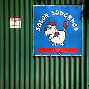 """Saloon Superdog"". #lysa #lysanadlabem #czechrepublic #dog #sign #saloon #hundesalon #hund #dogparlor #dogparlour"