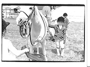 Hampton Classic 1992 New York© Copyright Photograph by Dafydd Jones 66 Stockwell Park Rd. London SW9 0DA Tel 020 7733 0108 www.dafjones.com