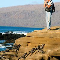 South America, Ecuador, Galapagos Islands, Santiago Island, James Island, Port Egas.