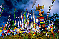 Prayer flags on Dochu La (pass) between the Thimphu and Punakha Valleys, Bhutan