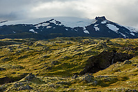 It was interesting seeing the contrasts of black lava, verdant moss, and glacial ice on Snæfellsjökull.