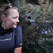 Terry Ward looking (nervously) at a pile of four or five venomous banded sea kraits lounging on a shaded ledge.