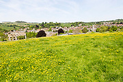 Summer landscape view over wildflower field to valley location town of Bruton, Somerset, England, UK