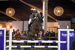 Lacus Filip, BEL, Mambo van Paemel<br /> Pavo hengstencompetitie 6 jaar<br /> Hengstenkeuring BWP - Lier 2018<br /> © Dirk Caremans<br /> 20/01/2018