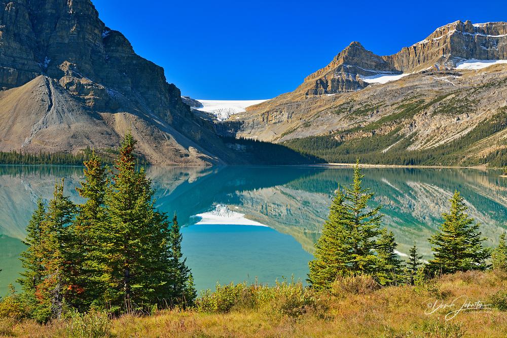 Bow glacier reflected in Bow Lake, Banff National Park, Alberta, Canada