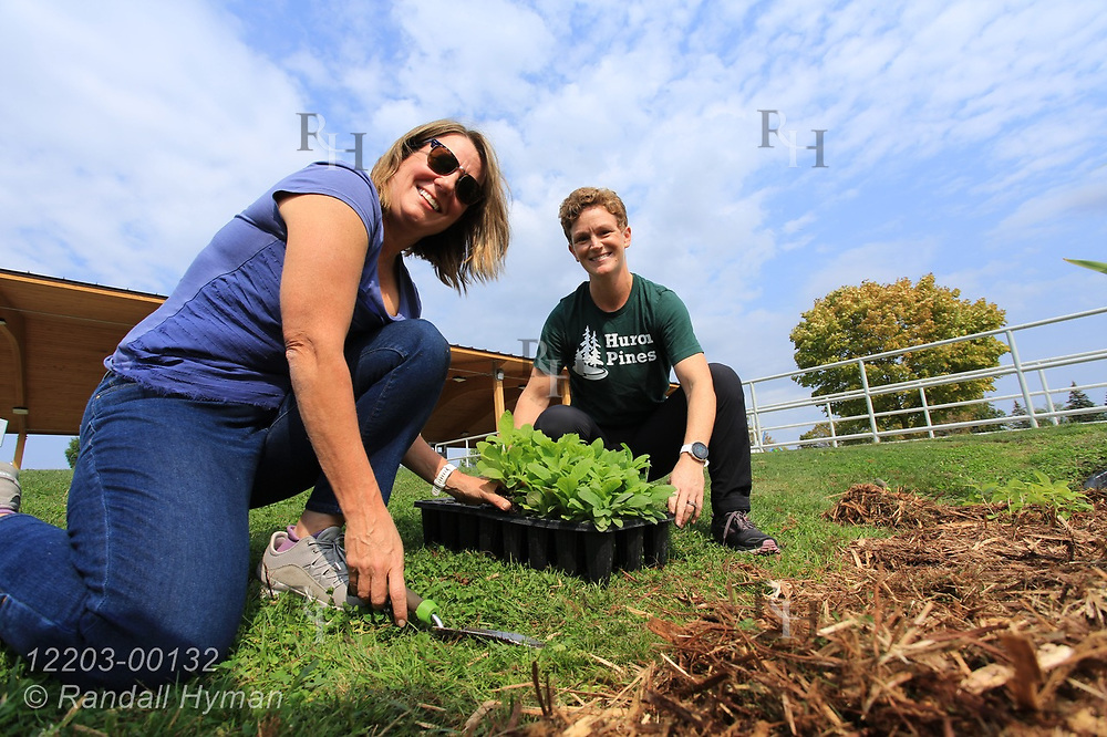 Bay Area Community Foundation CEO and Huron Pines community program director Abby Ertel plant wildflowers in bioswale of rain garden at River Side Park in Au Gres, Michigan.