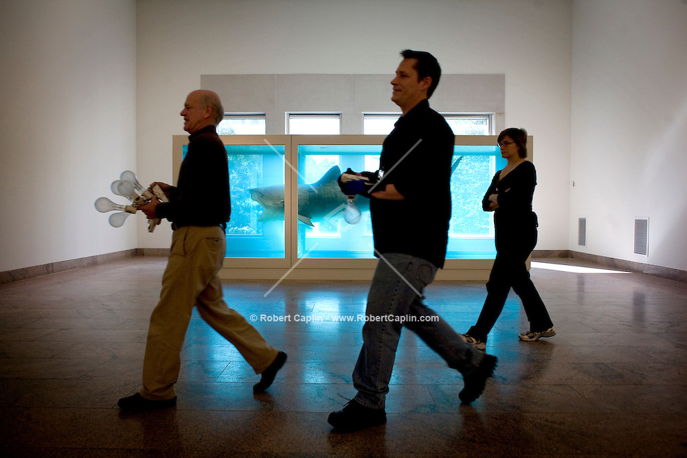 """Damien Hirst's """"The Physical Impossibility of Death in the Mind of Someone Living"""" from the Steven and Alexander Cohen Collection is installed at the Metropolitan Museum of Art, Monday, Oct. 15, 2007. Photographer: Robert Caplin For The New York TImes"""