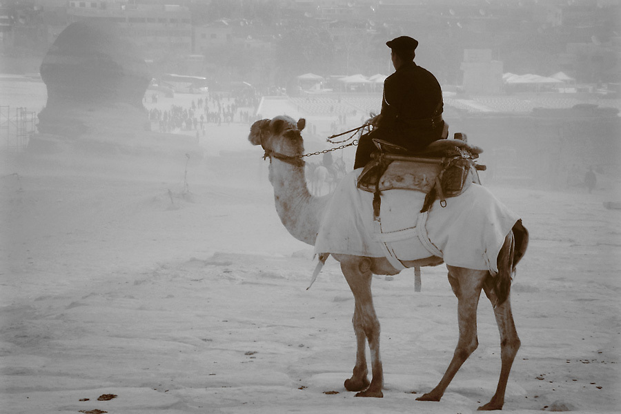 A camel-mounted Egyptian policeman looks down on the Great Sphinx from his perch on the Giza Plateau, beside the Great Pyramids.