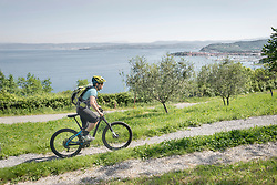 Biker on bicycle trails by sea