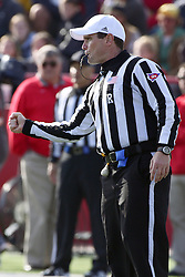 05 November 2011: referee Kerry Ripley during an NCAA football game between the Western Illinois Leathernecks and the Illinois State Redbirds at Hancock Stadium in Normal IL