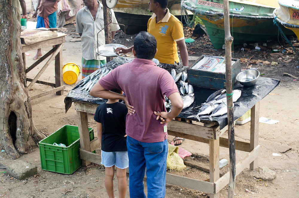 People buying fish at Galle market, Sri Lanka