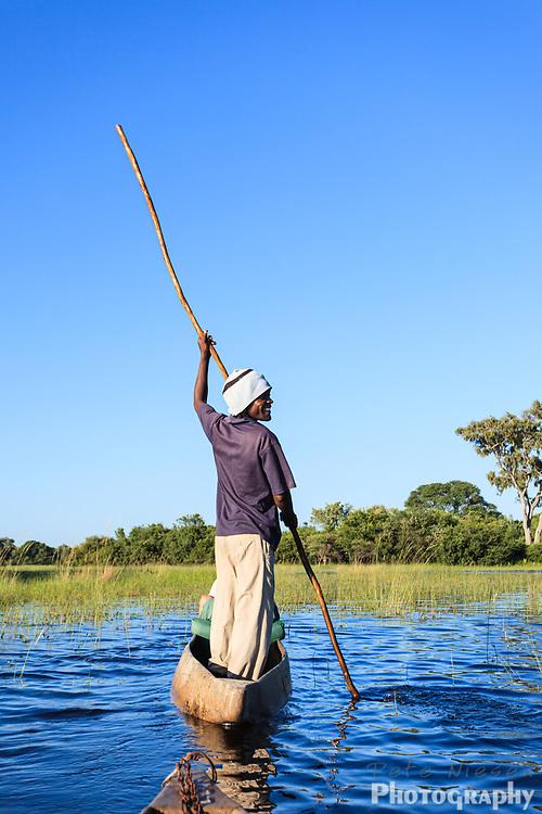 Botswanan man poles his way across delta on mokoro safari