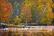 Autumn Morning Mist on the CT River