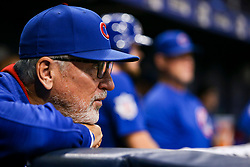 September 19, 2017 - St. Petersburg, Florida, U.S. - WILL VRAGOVIC   |   Times.Chicago Cubs manager Joe Maddon (70) watches the action in the second inning of the game between the Chicago Cubs and the Tampa Bay Rays at Tropicana Field in St. Petersburg, Fla. on Tuesday, Sept. 19, 2017. (Credit Image: © Will Vragovic/Tampa Bay Times via ZUMA Wire)